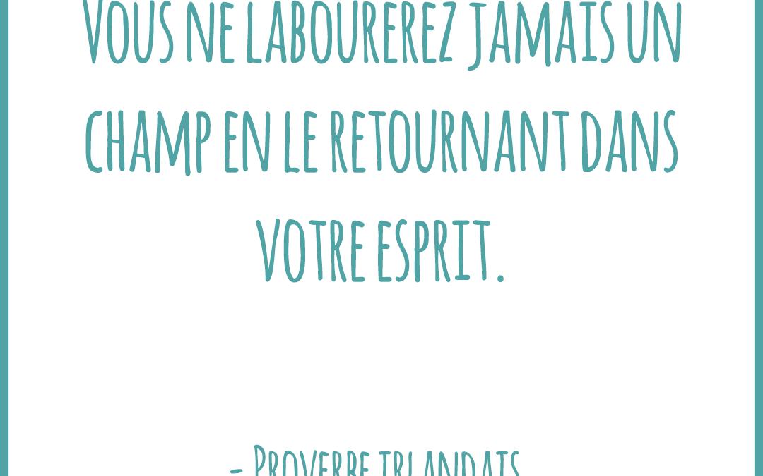Proverbe islandais